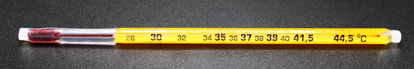 Picture of EA - IM-119T - Replacement Thermometer for Millipore Dry Bath IM-101 (IM119T)