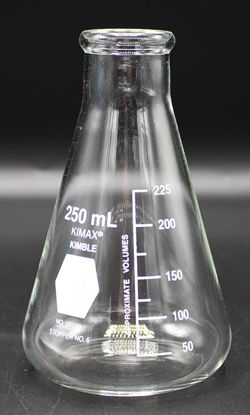 Picture of FK-852 - 250 ml Narrow-Mouth Erlenmeyer Flask, Kimax (FK852)