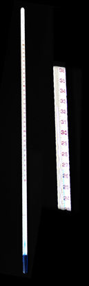 Picture of EA - TB-91C - Blue-Liquid ASTM Thermometer, 20 to 50°C in 0.1°C Increments (TB91C)
